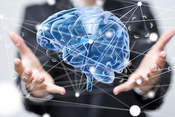 Brain – 600×400