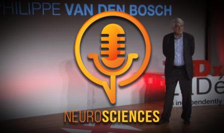 Neurosciences et harmonie